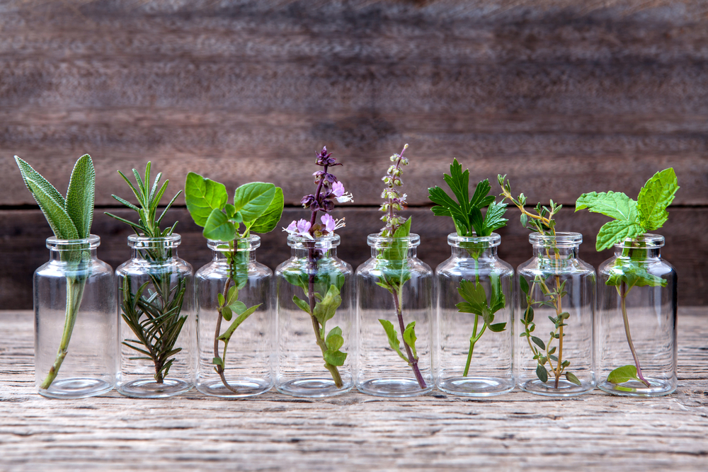 Top Essential Oils for Skin Care